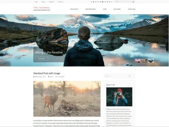 The Minimal - WordPress theme
